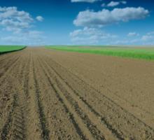 Posvet Možnosti trajnostne rabe tal